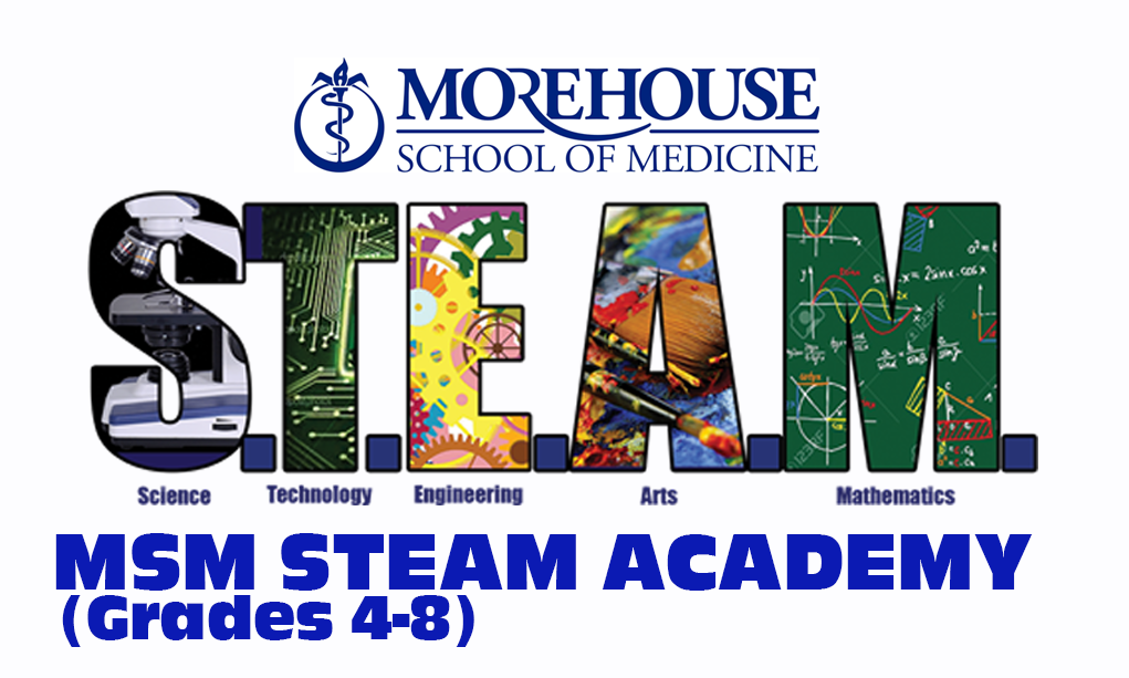 msm steam 4-8