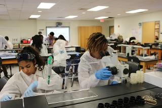 Two students working with lab equipment