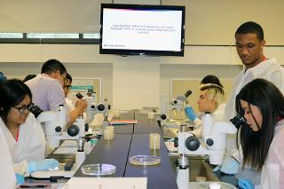 Students working with microscopes around a table