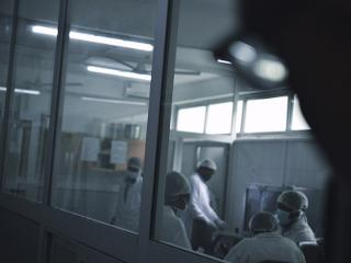 the view of a group wearing surgical masks from outside the room's windows